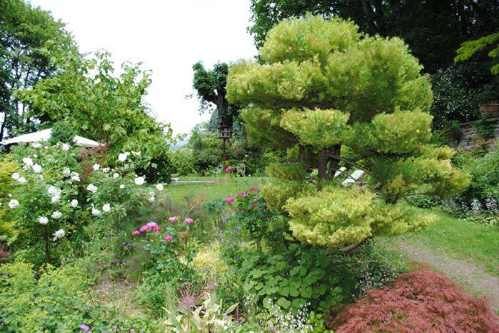 Accueil for Le jardin 69008 lyon